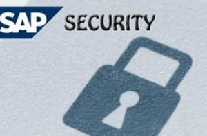 SAP Security and Authorisation