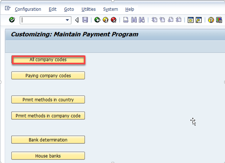 customizing-maintain-payment-program