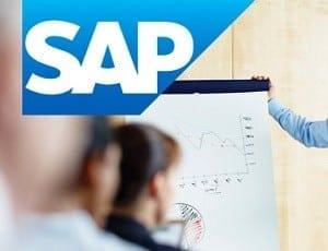 SAP Financials Tips - Including a Debit item on a Vendor