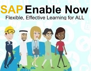 SAP Enable Now – The Basics