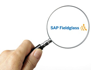 A Look At SAP Fieldglass – Cloud-based Vendor Management System