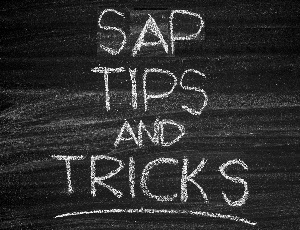 Eursap's Tip Of The Week: Creating And Managing Sales Plans In SAP Fiori Using The Sales Performance App.